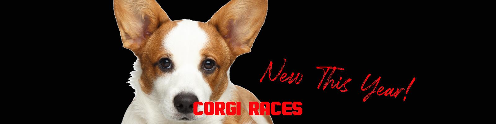 CORGI dog strip.jpg