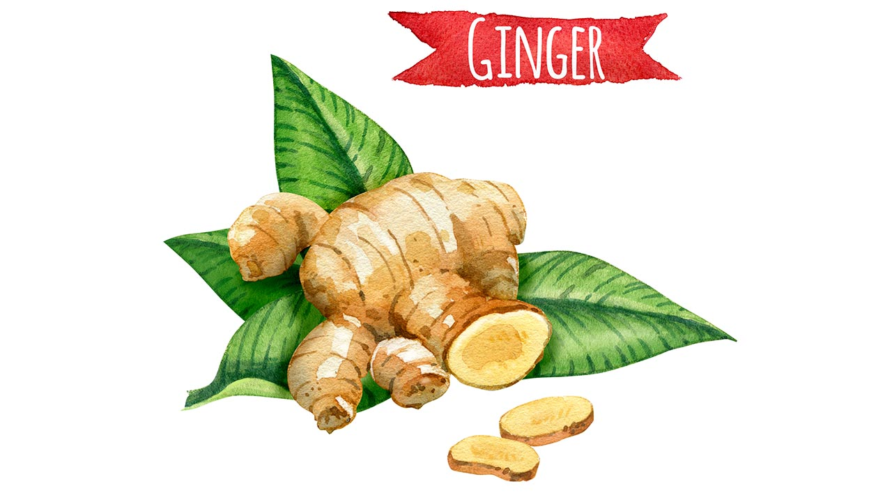Ginger Kills Prostate Cancer  - Dr. David Samadi
