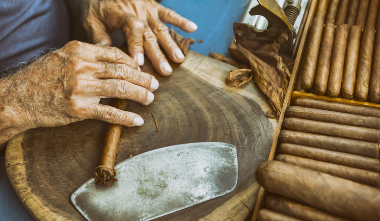 Cuban old man manufacturing cigar with tabacco leaves