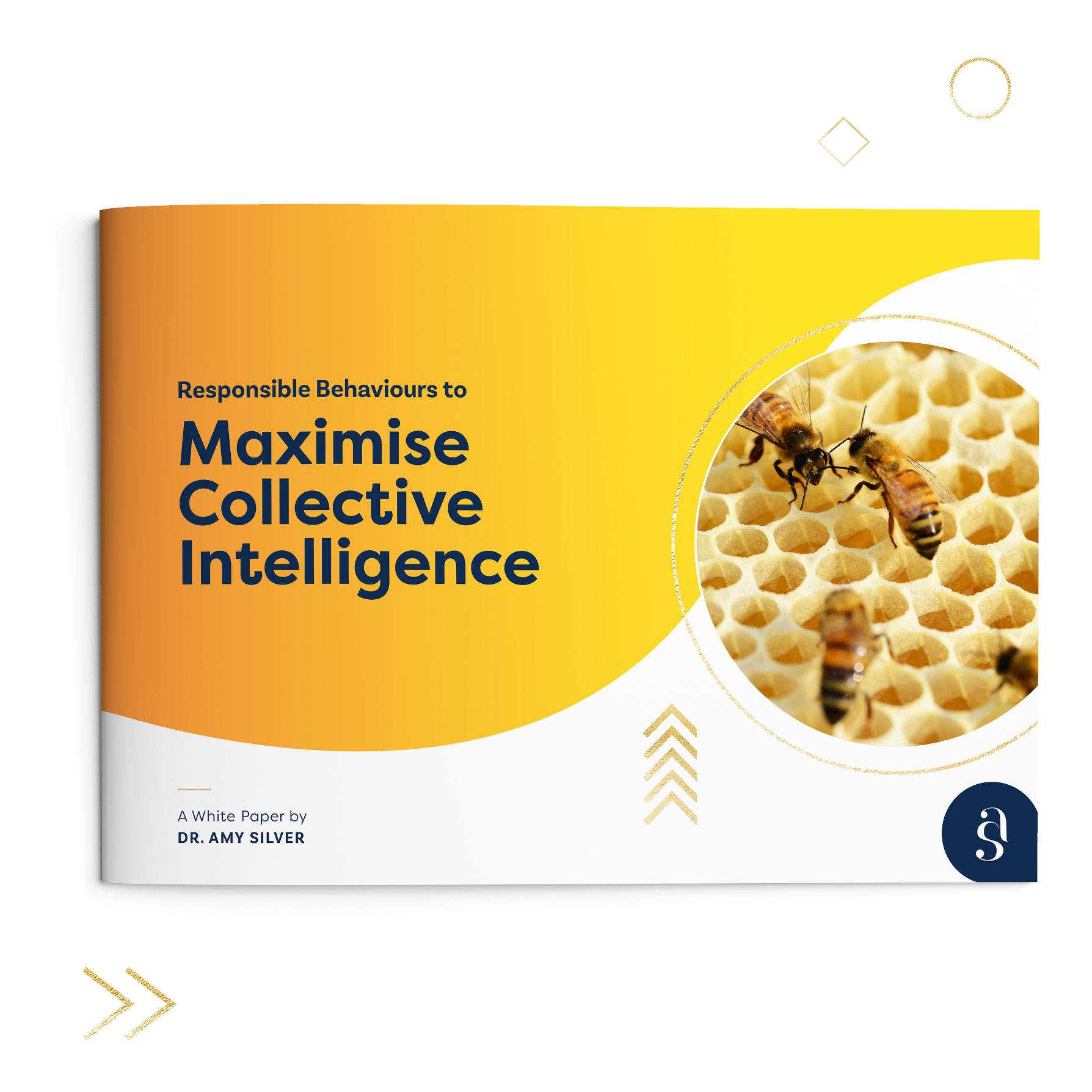 Click to download  the Dr Amy Silver's white paper:  Responsible Behaviours to Maximise Collective Intelligence