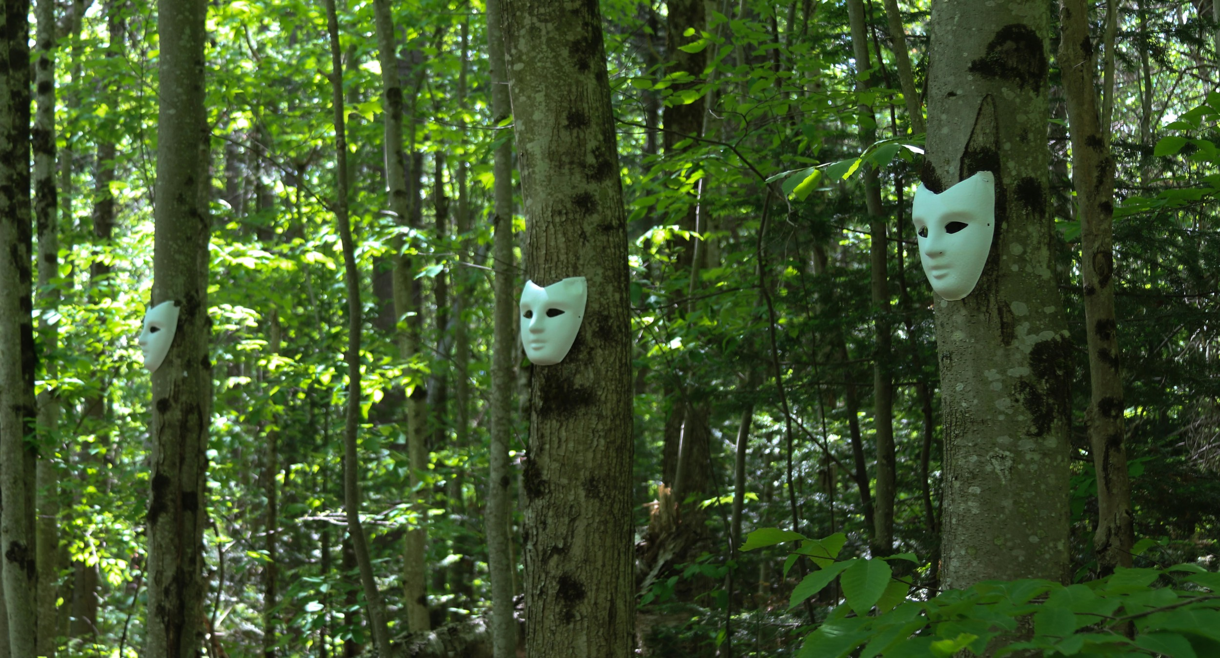 As the race went on, mysterious objects, always in a set of eight, appeared in the woods.