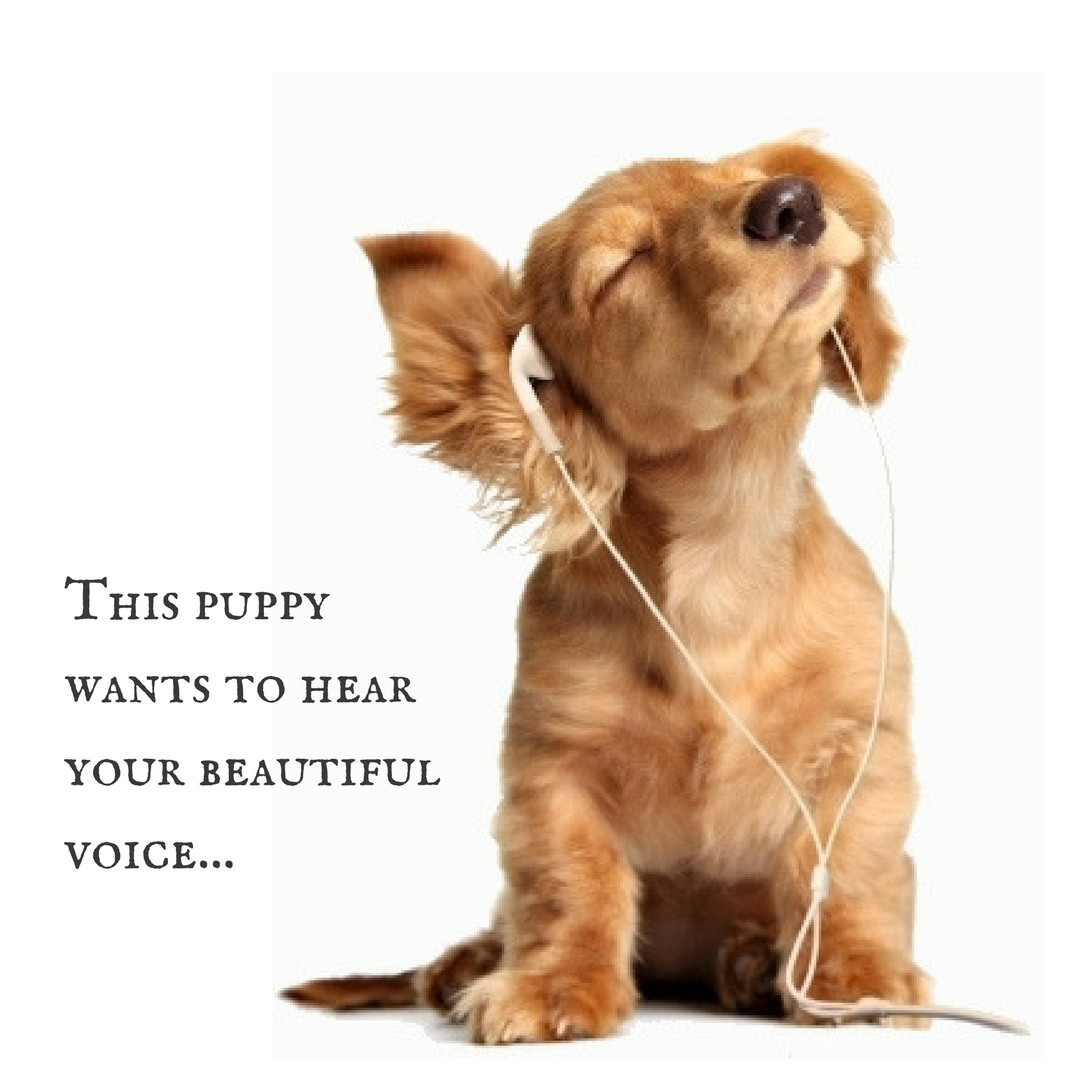 Send us voice memos 1.png