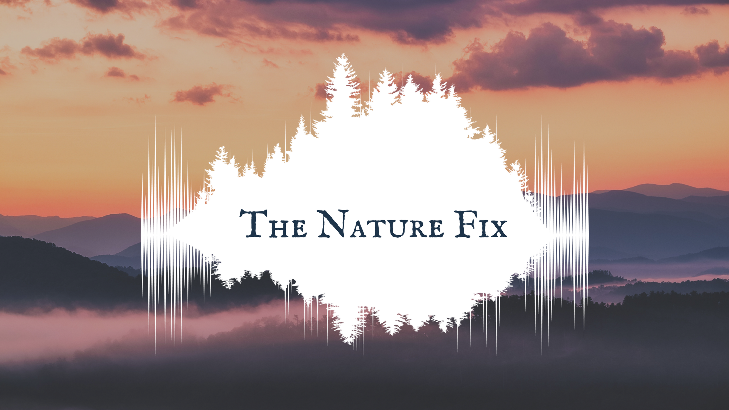 The Nature Fix Logo 1 HORZ hi res 2.png