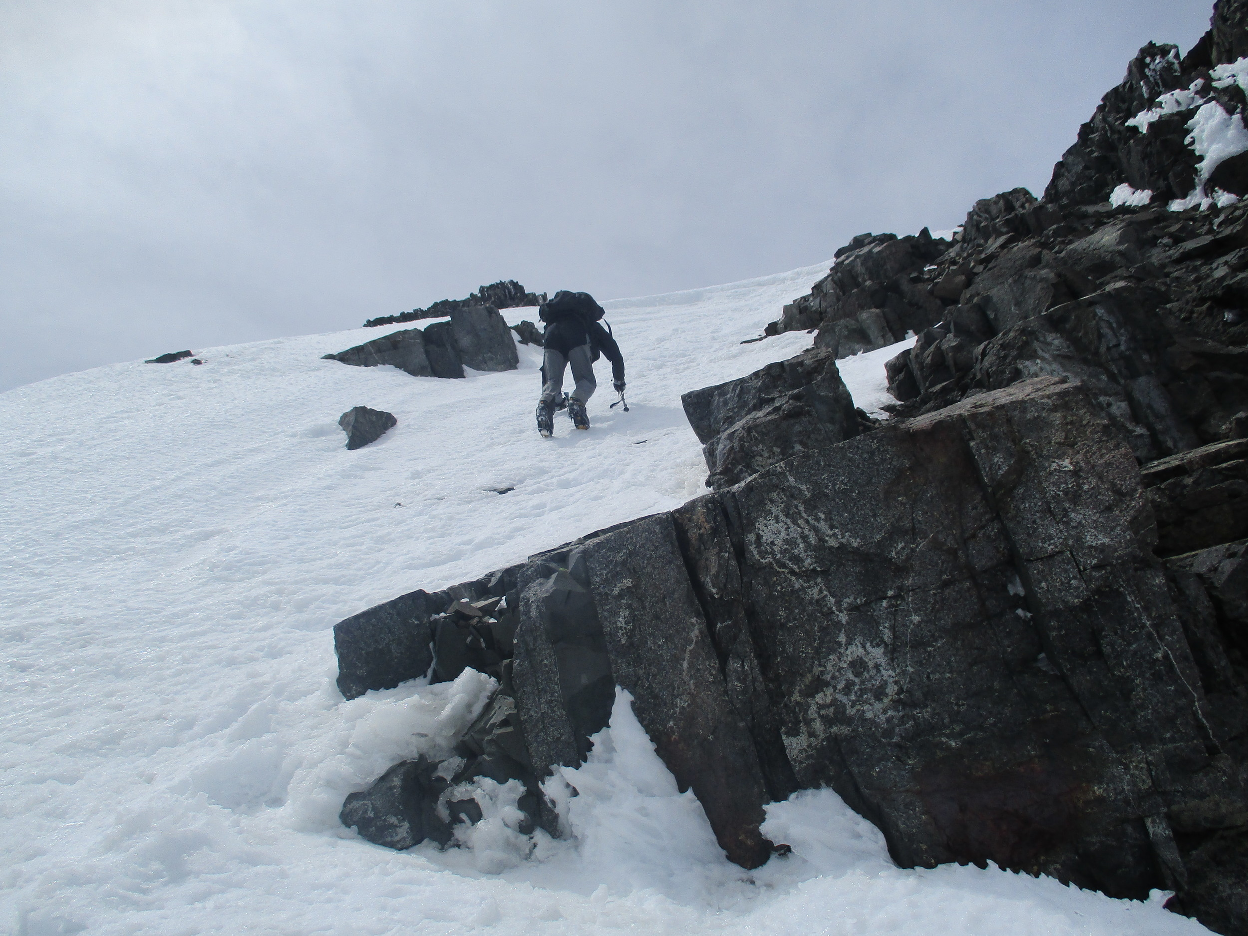 Approaching the summit , Tappy