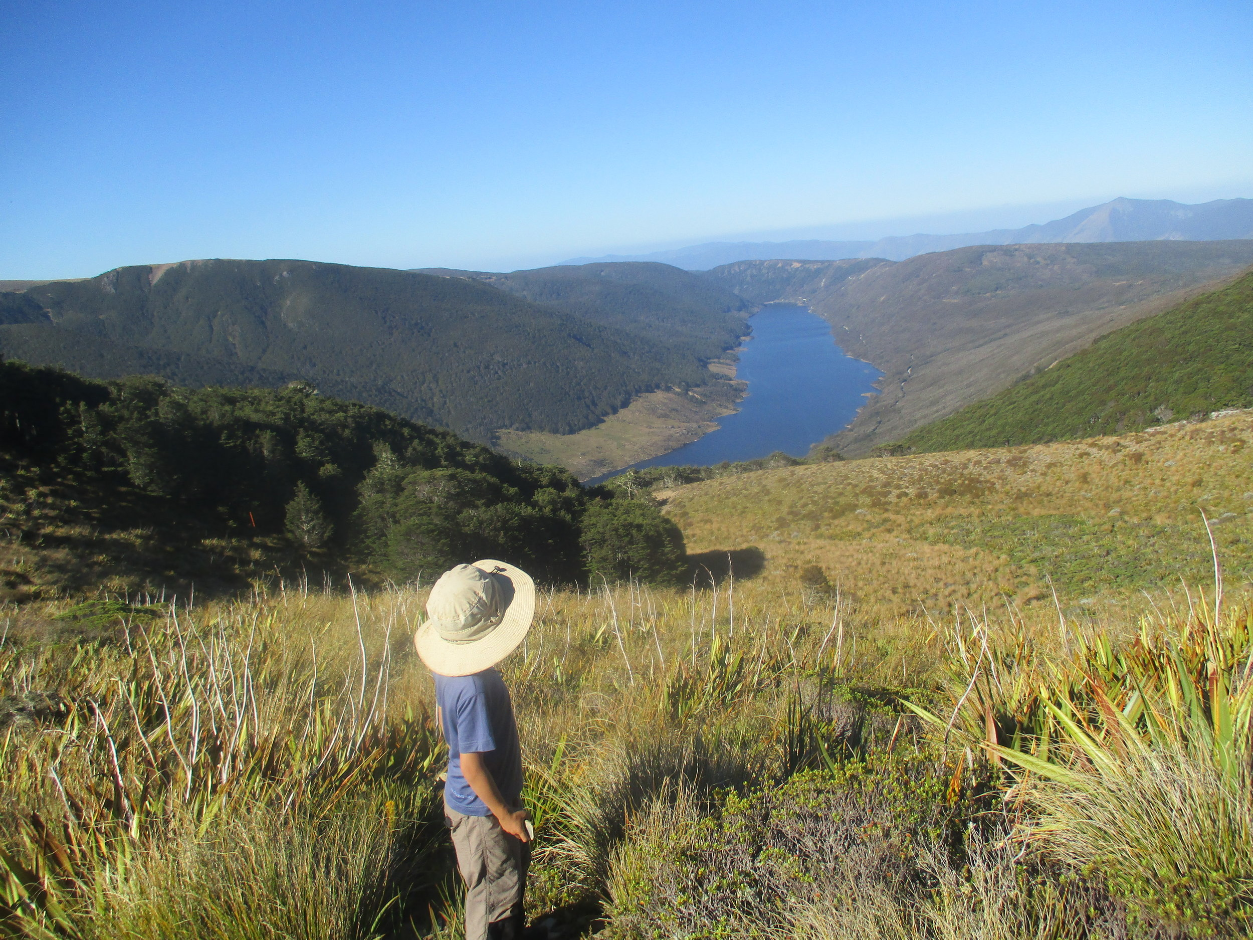 After spending the whole school holidays waiting for a break in the weather I finally got Isabelle and Leo up to Lake Peel below Mount Peel on the the very last weekend before school. Here Leo looks out over the Cobb Resivor and into Golden Bay.