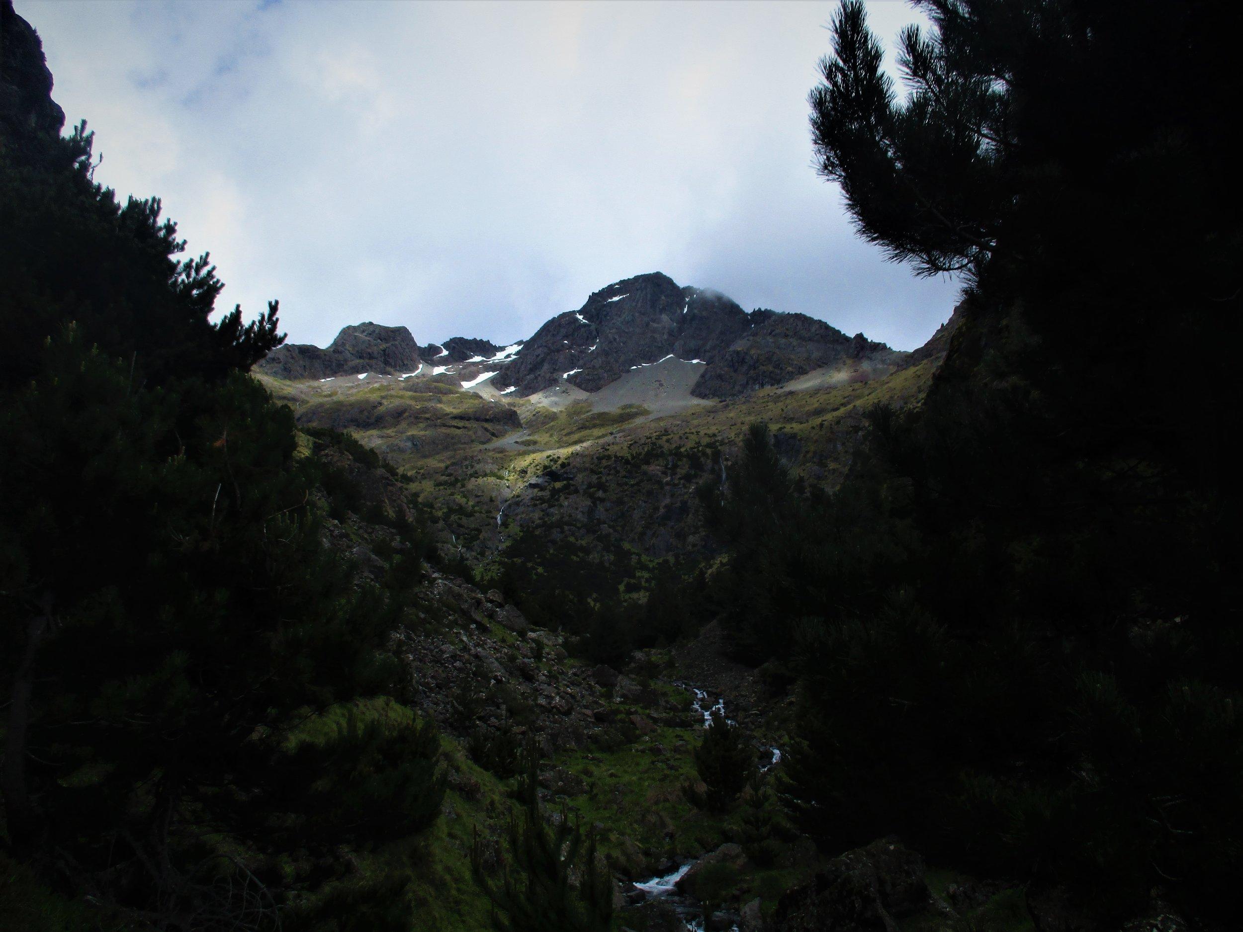 Lower slopes of Scotts Knob