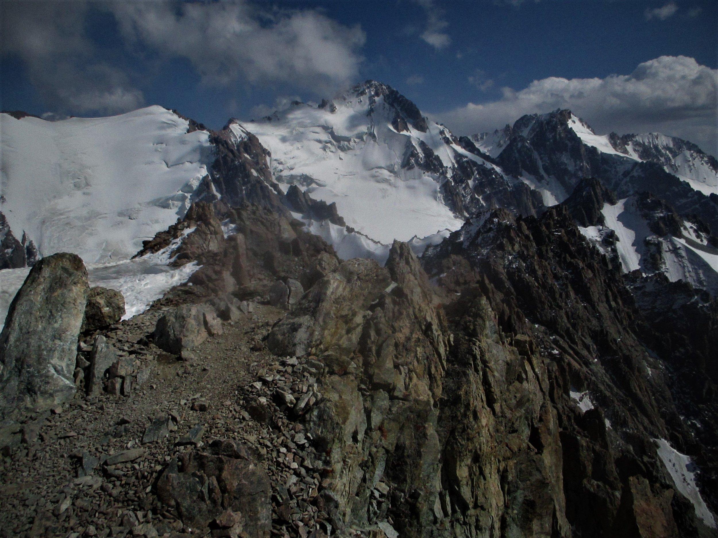Alps in profusion