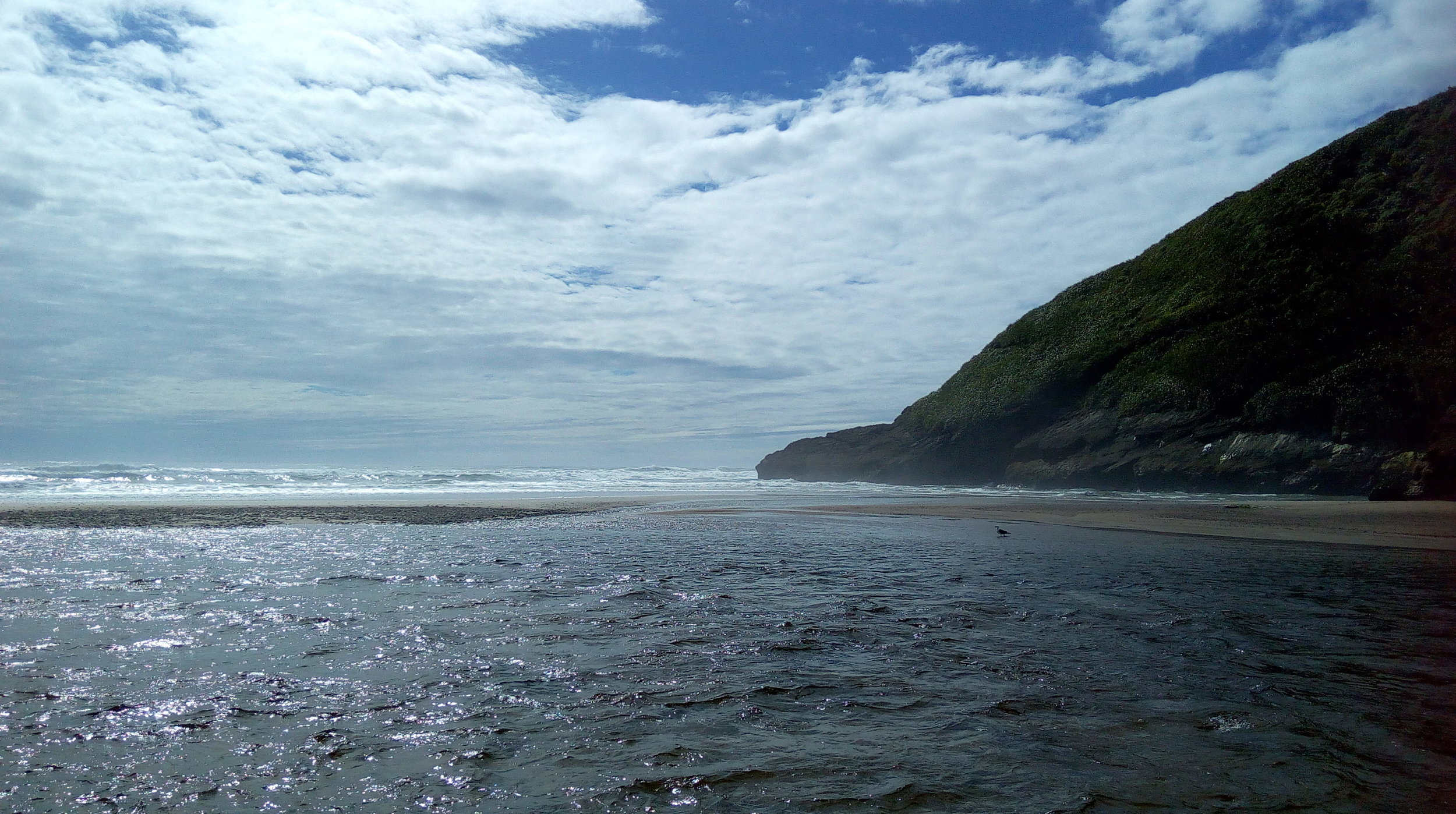 The Tasman sea at the Heaphy river mouth.