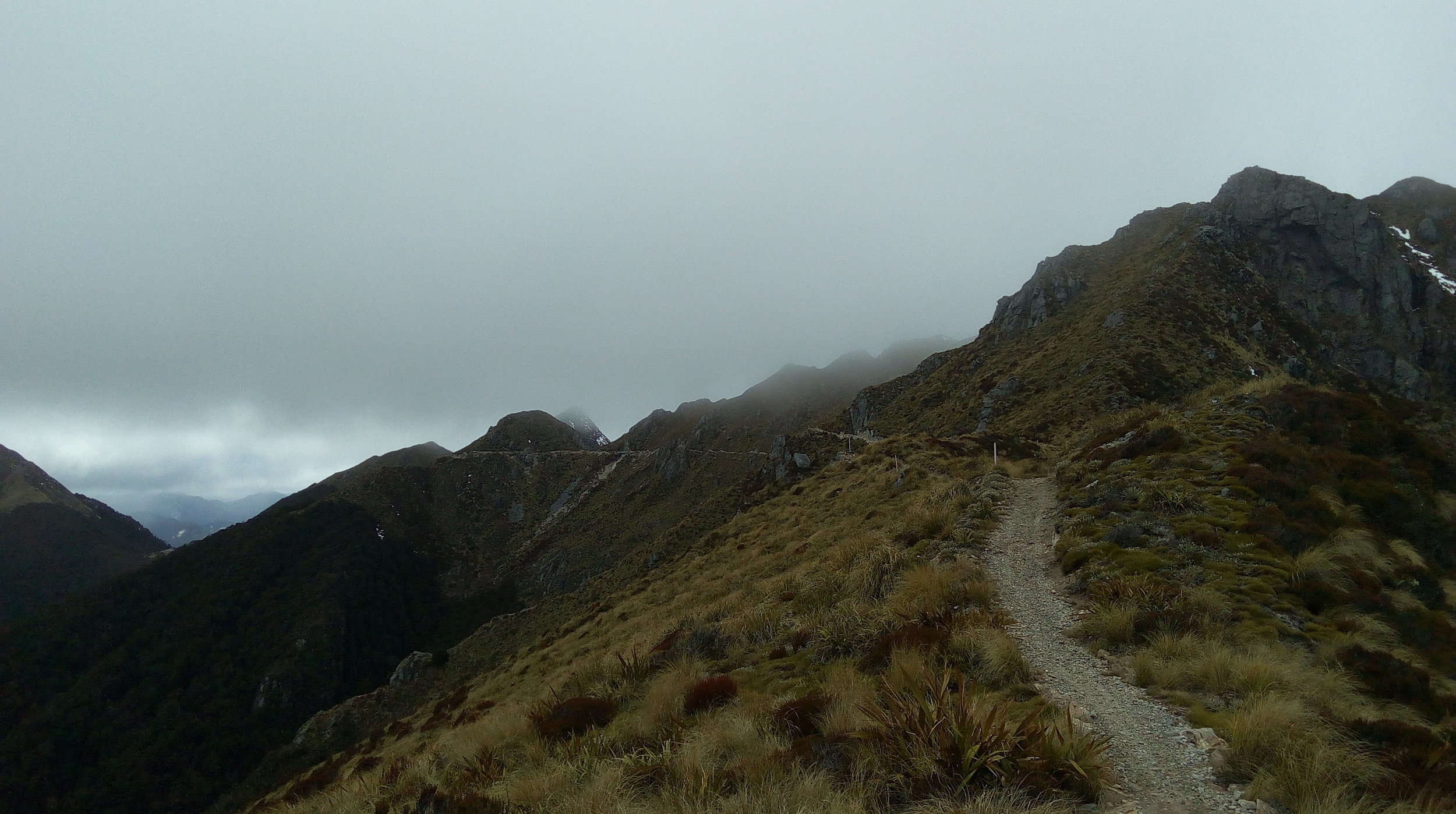 The trail along the tops.