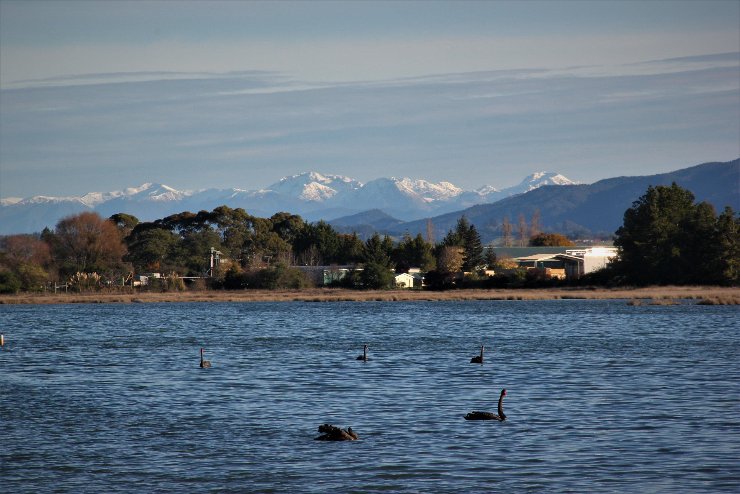 Looking South west over the Motueka Estuary to the Marino mountains.