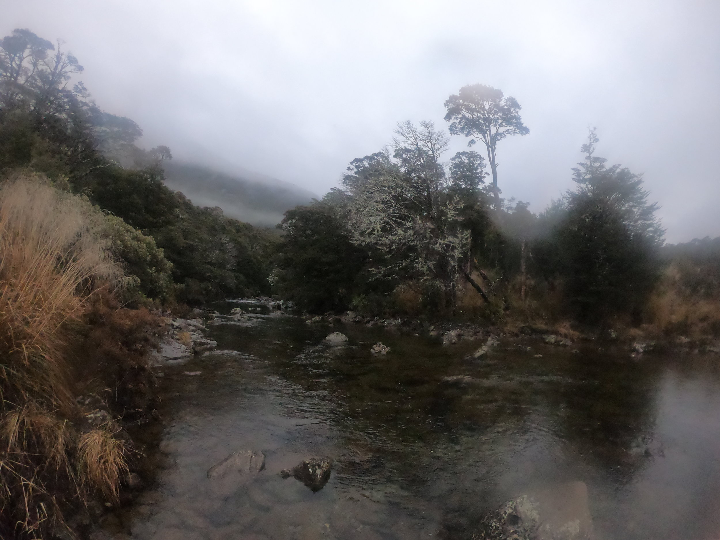 Winter is the best time to visit the local Kahurangi National park - not only is it basically empty but the forest provides good shelter from the weather - and that weather provides the best scenes.