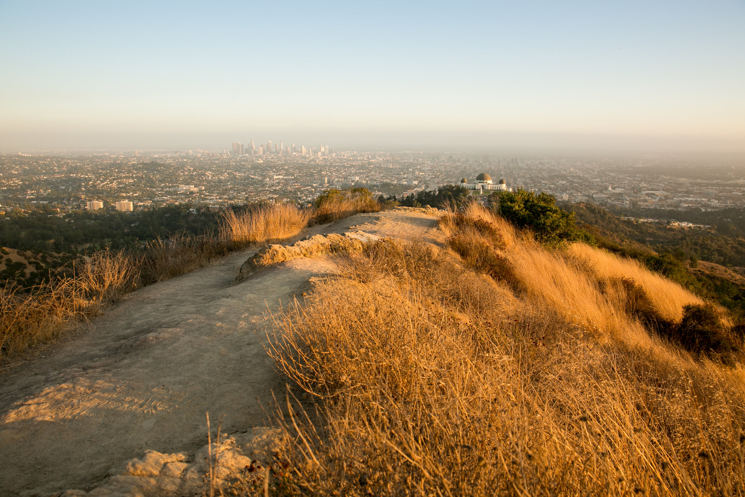 27-2019-proposal-griffith-park-observatory.jpg