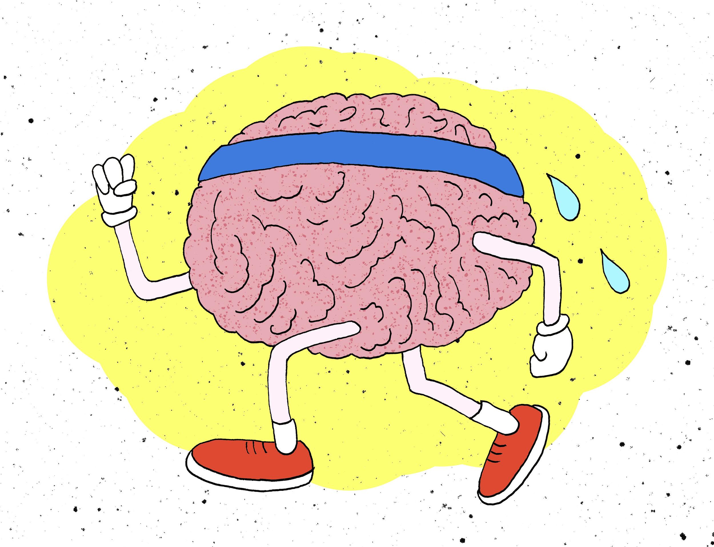 brain working out.jpg