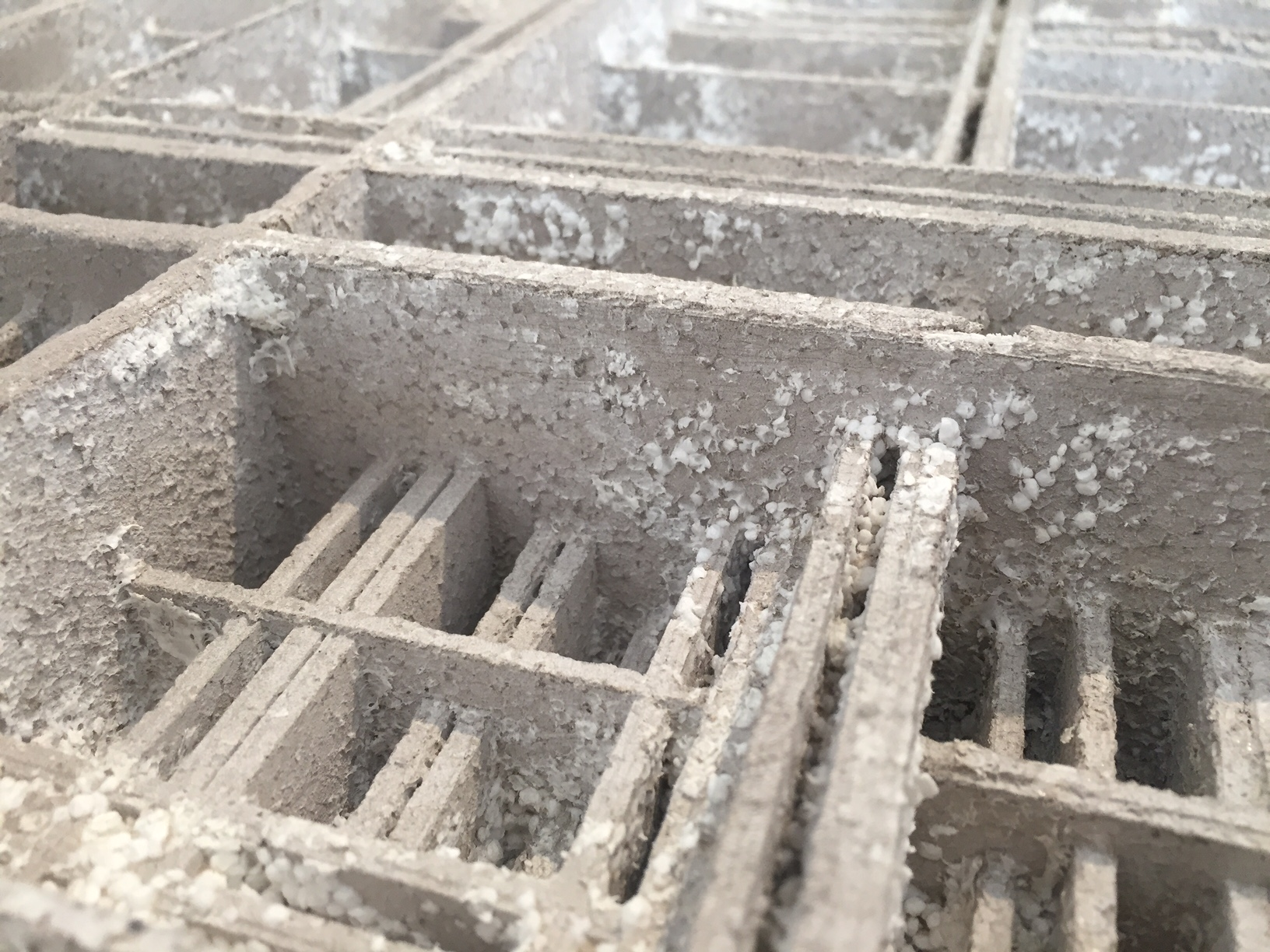 excavation01.jpg
