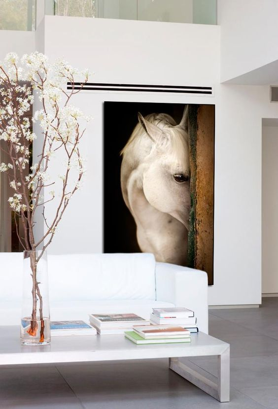 """""""Shy""""  by Raphael Macek features another soft, sweet face to watch over your home. These large-scale photos of horses are trending right now, as they add a natural element into a modern space and bring the outdoors in. Plus, for horse lovers, they get to look at a pretty horse all day!"""