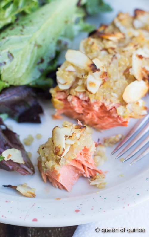 honey-quinoa-crusted-salmon-3.jpg