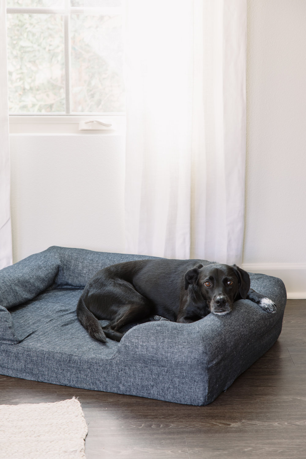 Even the dog bed matches!