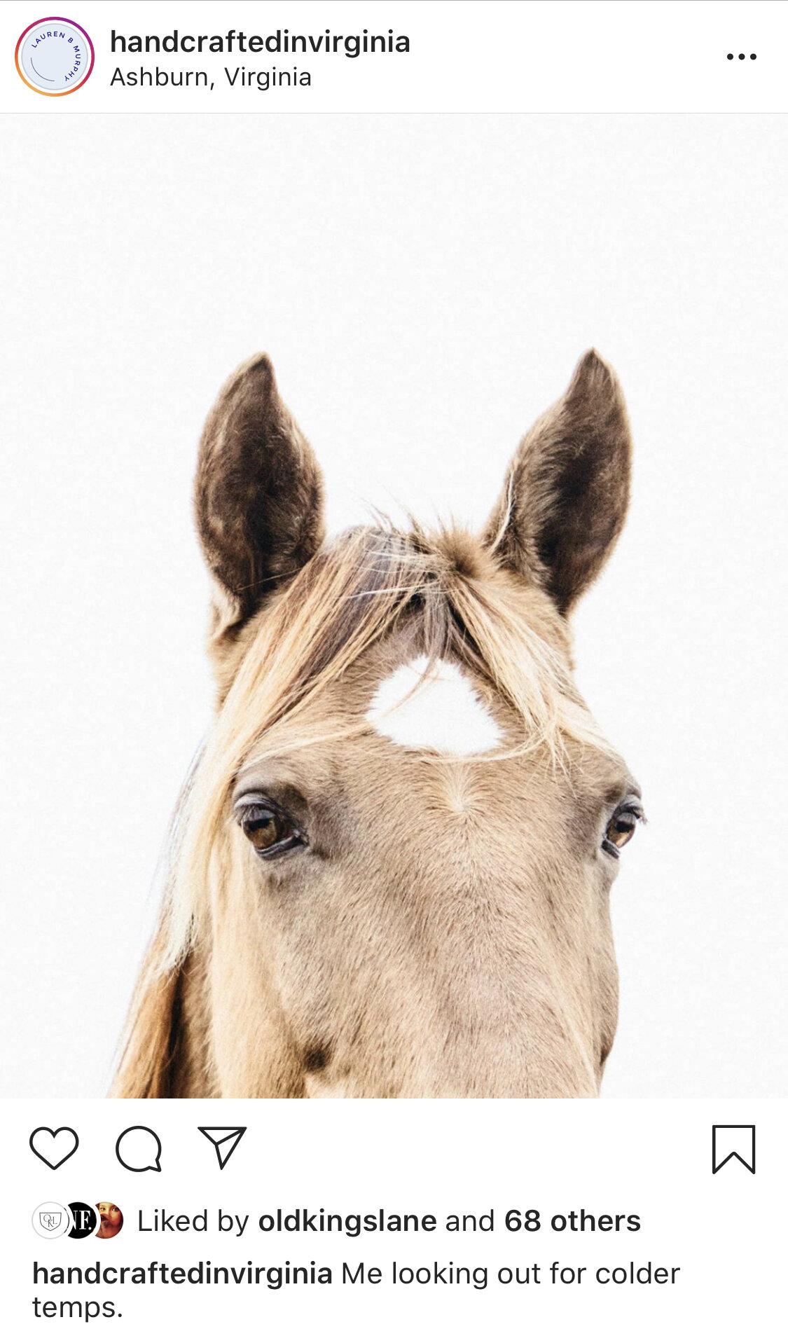 horse handcrafted in virginia