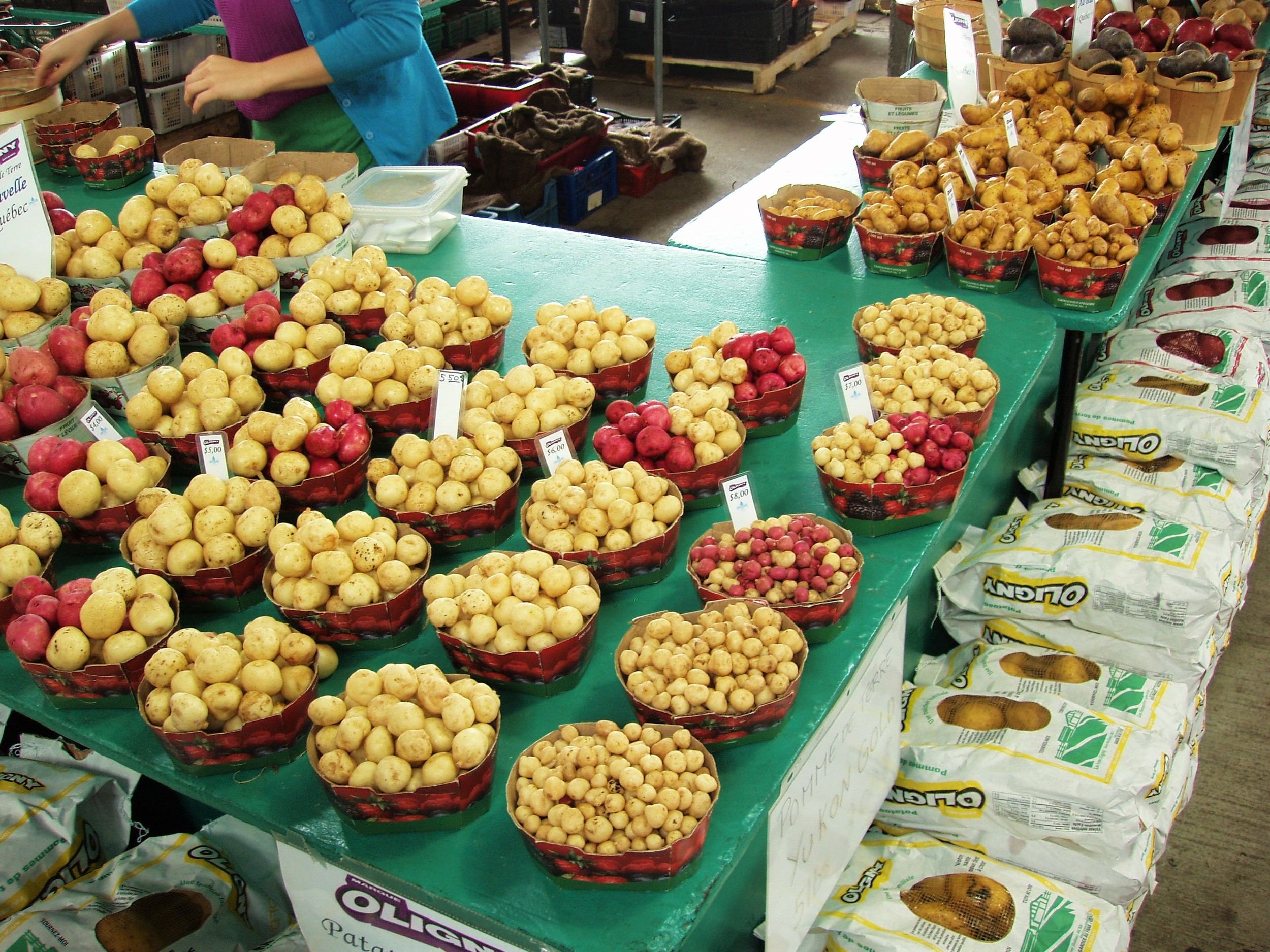 Jean Talon Market: Montreal