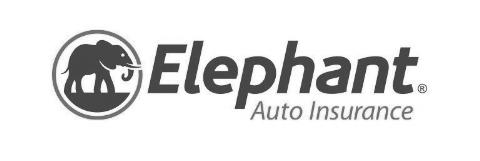 AbiReid_ElephantAuto