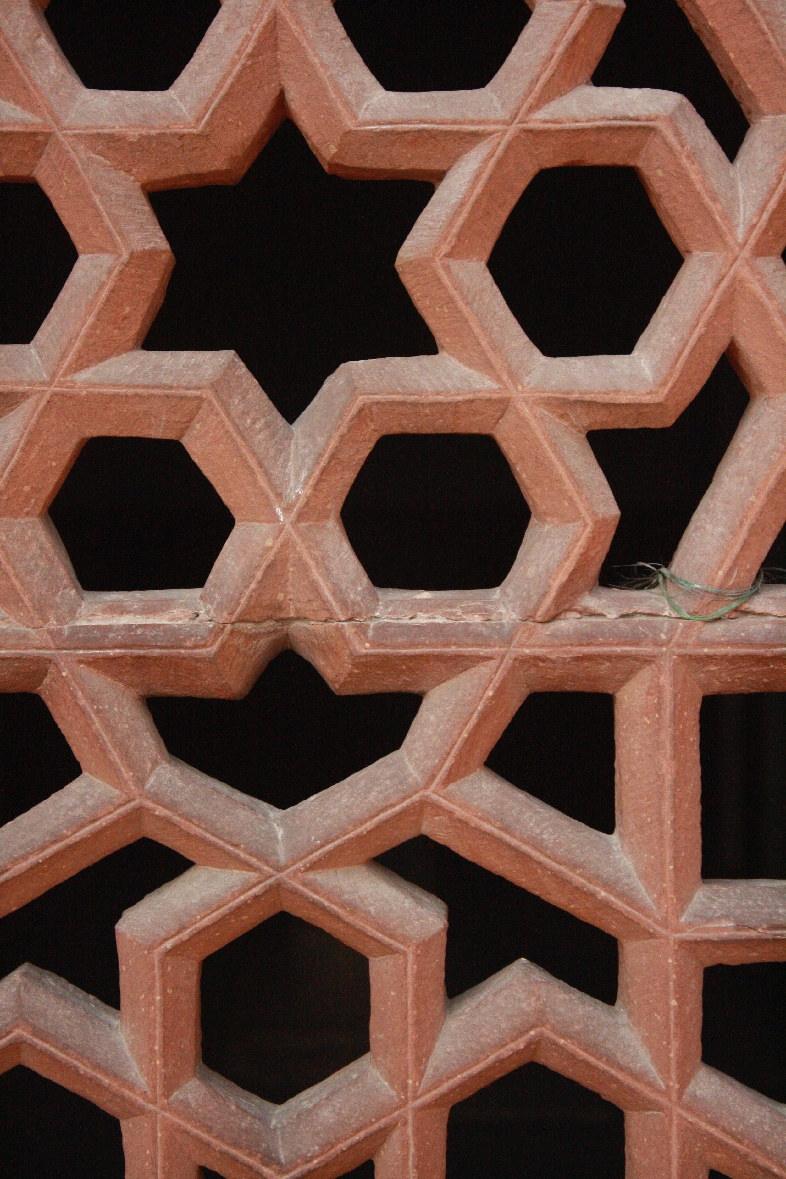 Spider web lattice work at Humayun's Tomb
