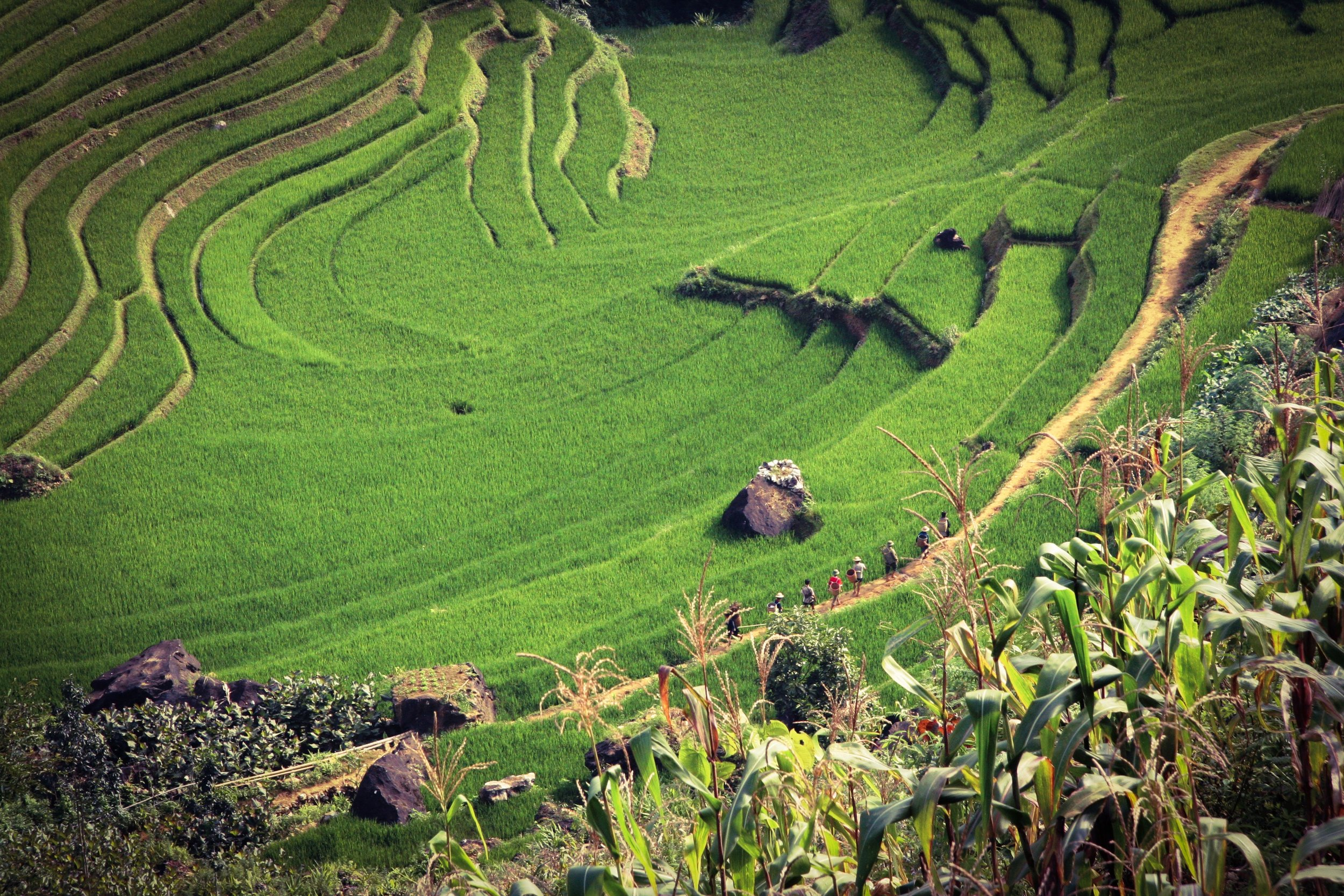 April: vietnam -