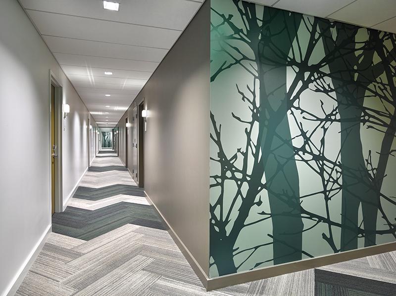 VNNSS_Int_13_RoomCorridor_np_CF028275_GR.jpg