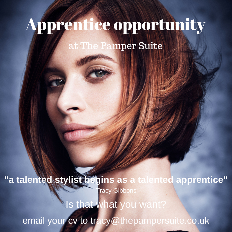 Apprentice opportunity.png