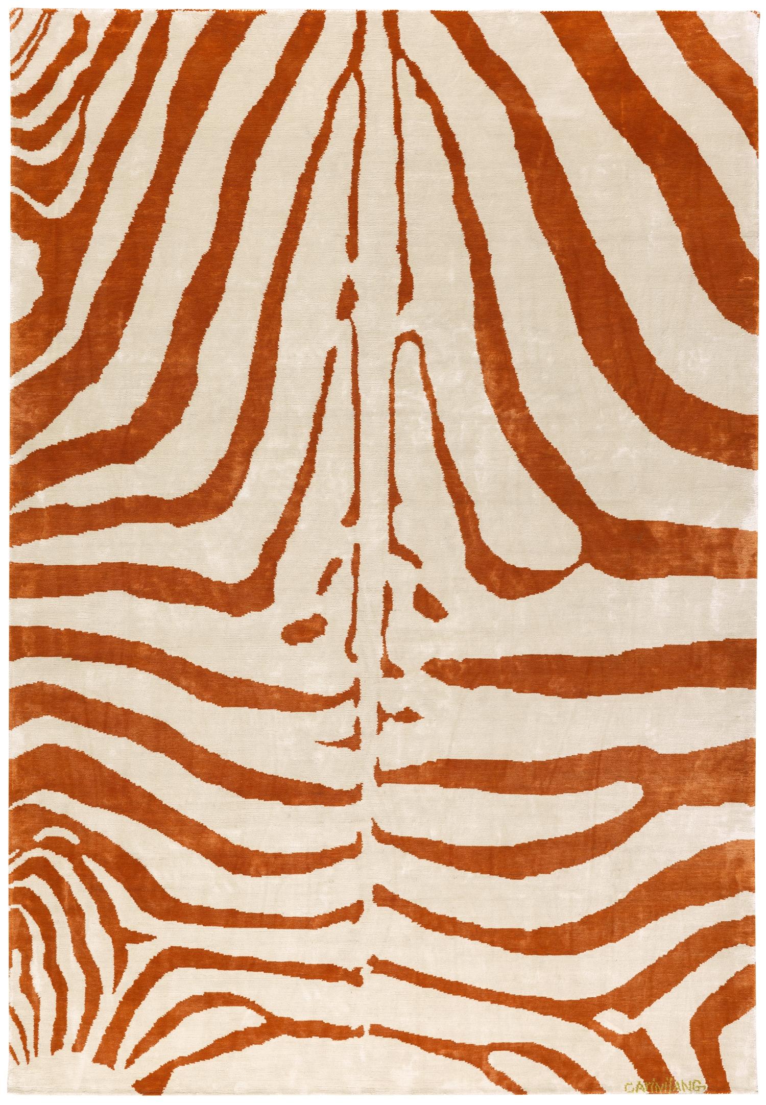 Zebra à l'Orange