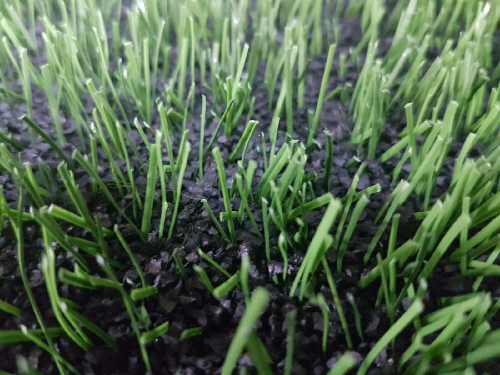 SBR rubber granules within the artificial turf