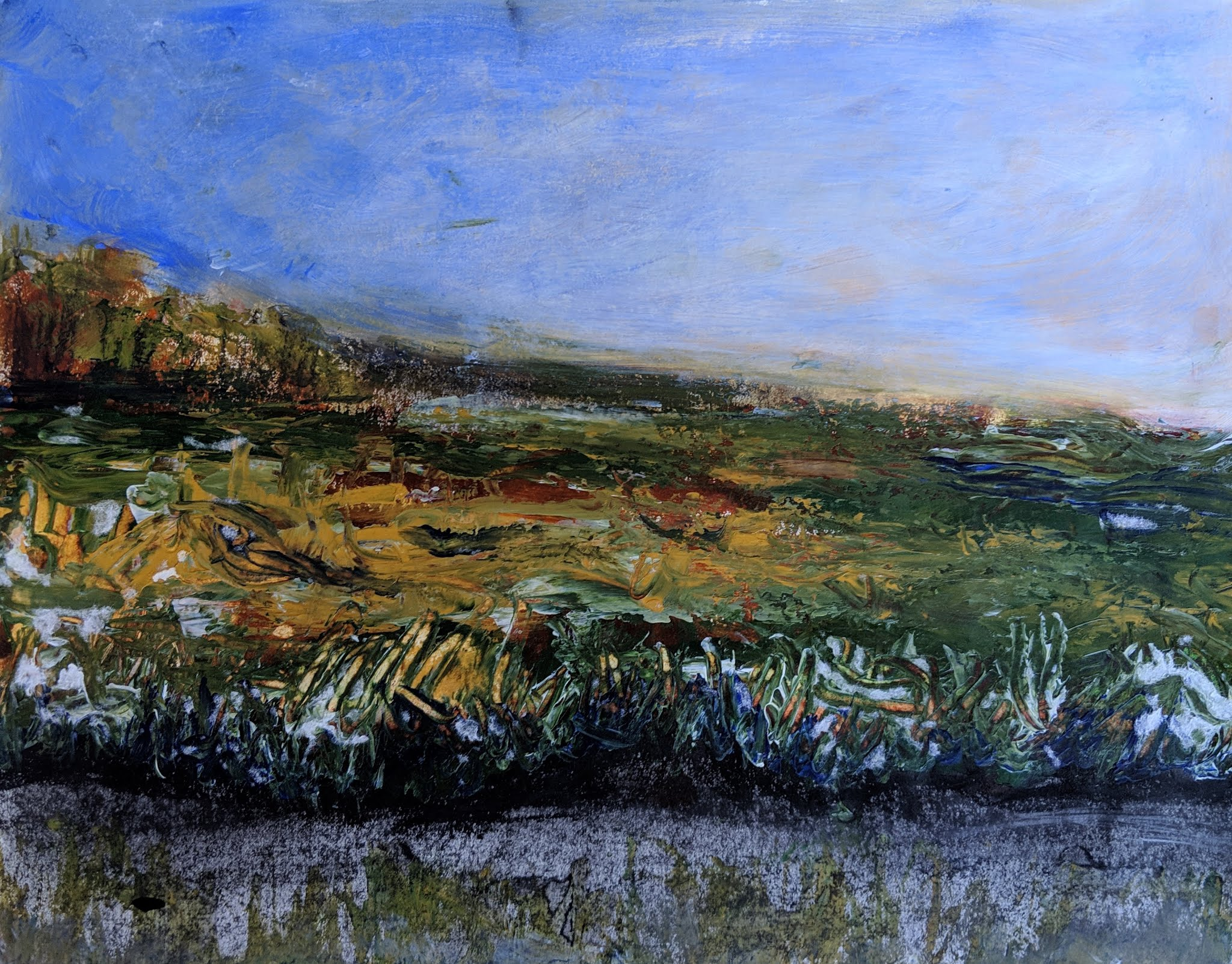 Rachel Carson Wildlife Refuge - Maine  Acrylic, Charcoal on paper | 11 x 14