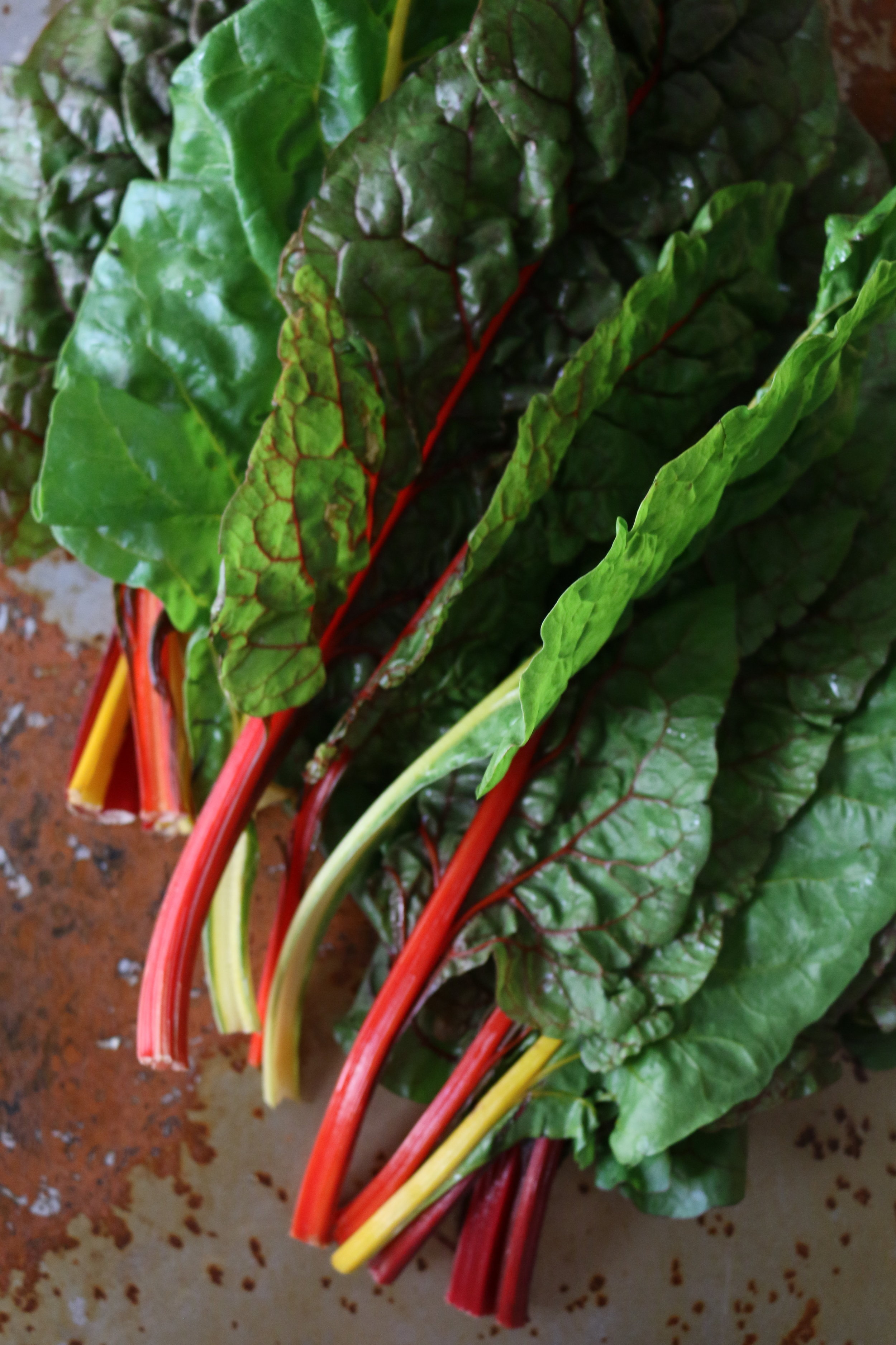 RAINBOW CHARD   - They get their name from their various stem colors.
