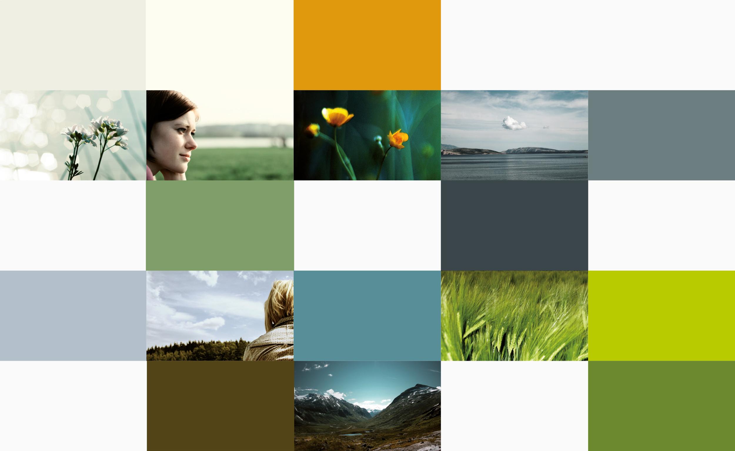 blyss-phytoceuticals-branding-02.jpg