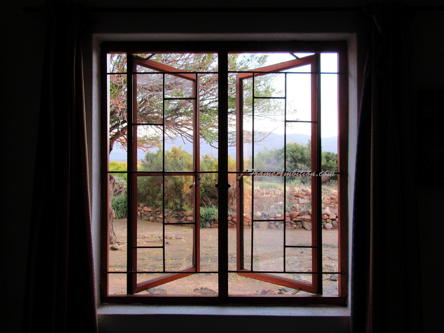 The view out my cottage window at  Rietfontein Reserve