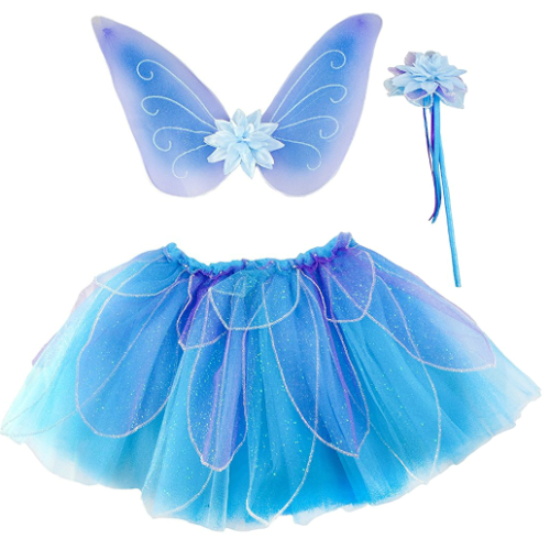 fairy wings and tutu.jpg