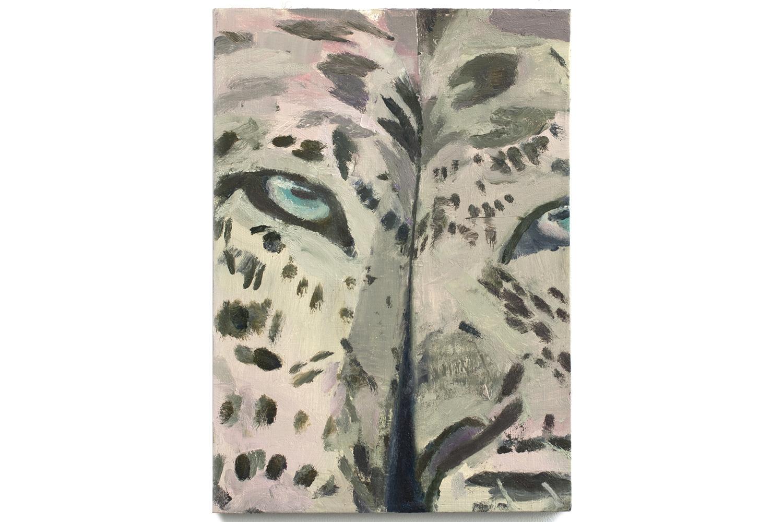 majumdar_leopard-legs_1500.jpg