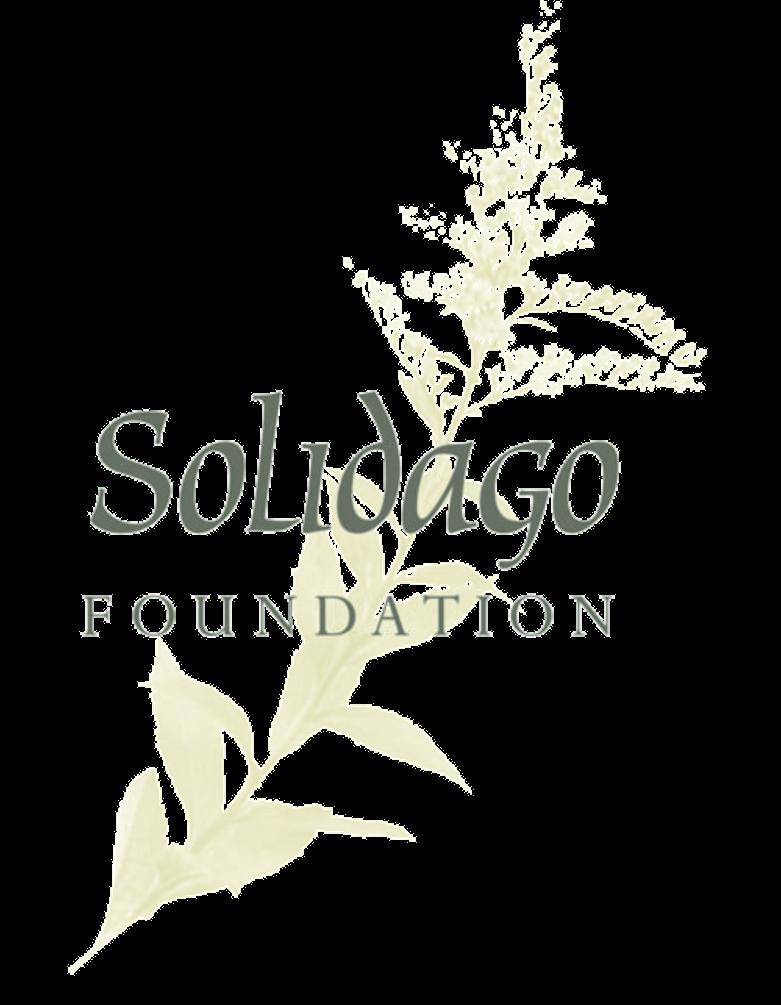 solidago.png