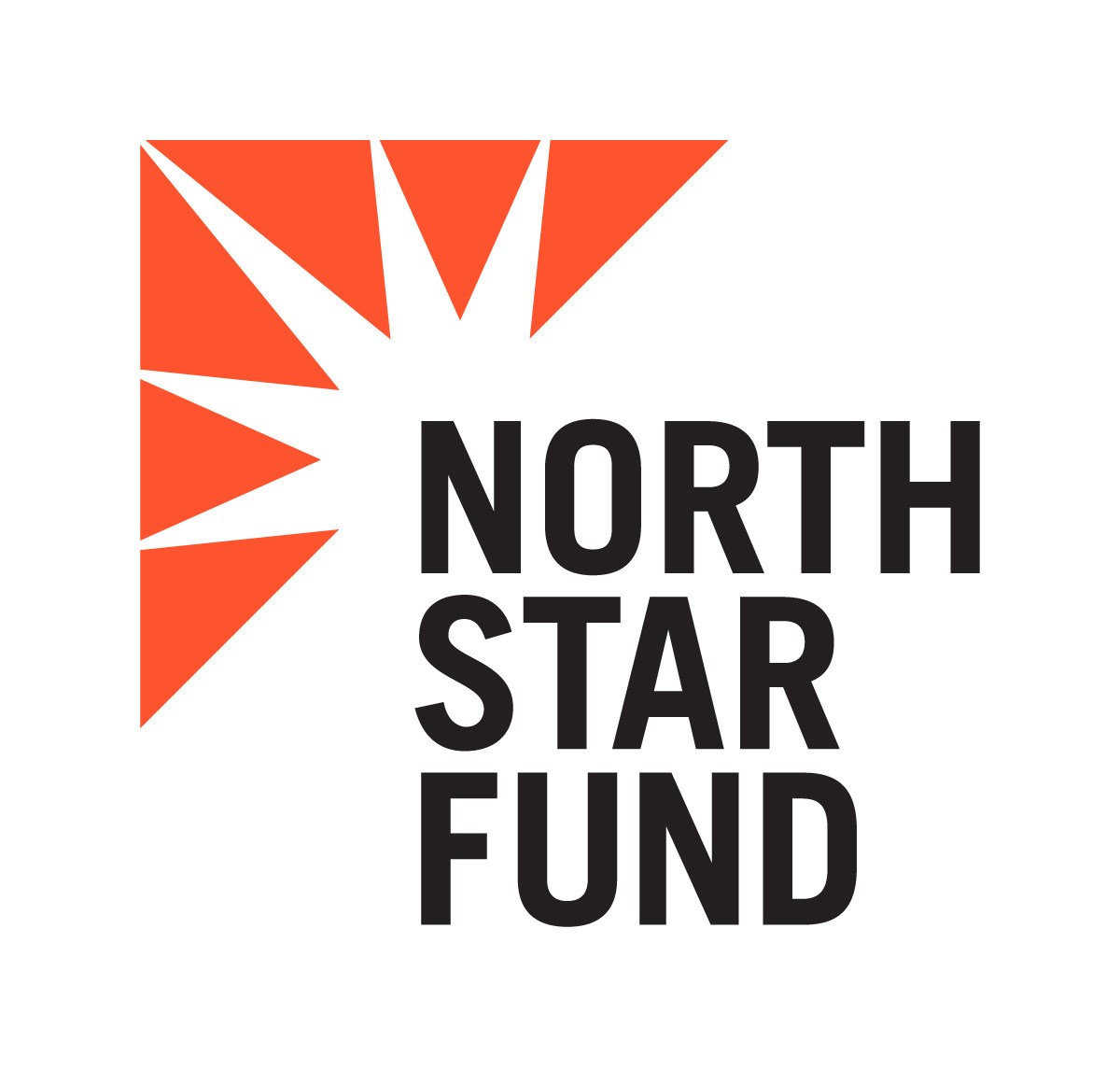 North-Star-Fund-Logo-1200.jpg
