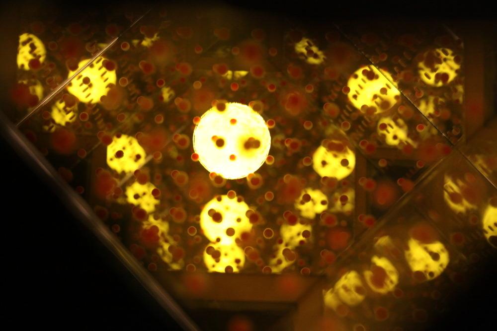 Hive 2, 2007