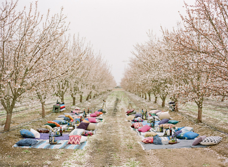 02-almond-orchard-wedding.jpg