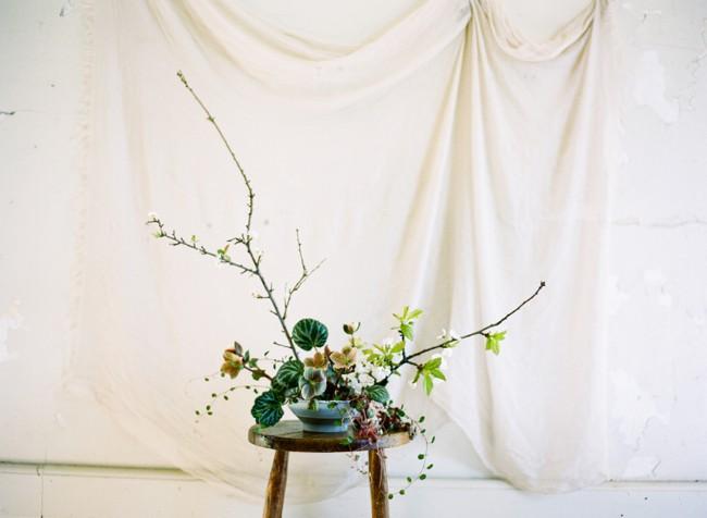 05-bloom.jpg