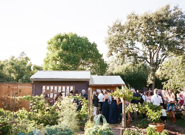040-backyard-bay-area-wedding.jpg