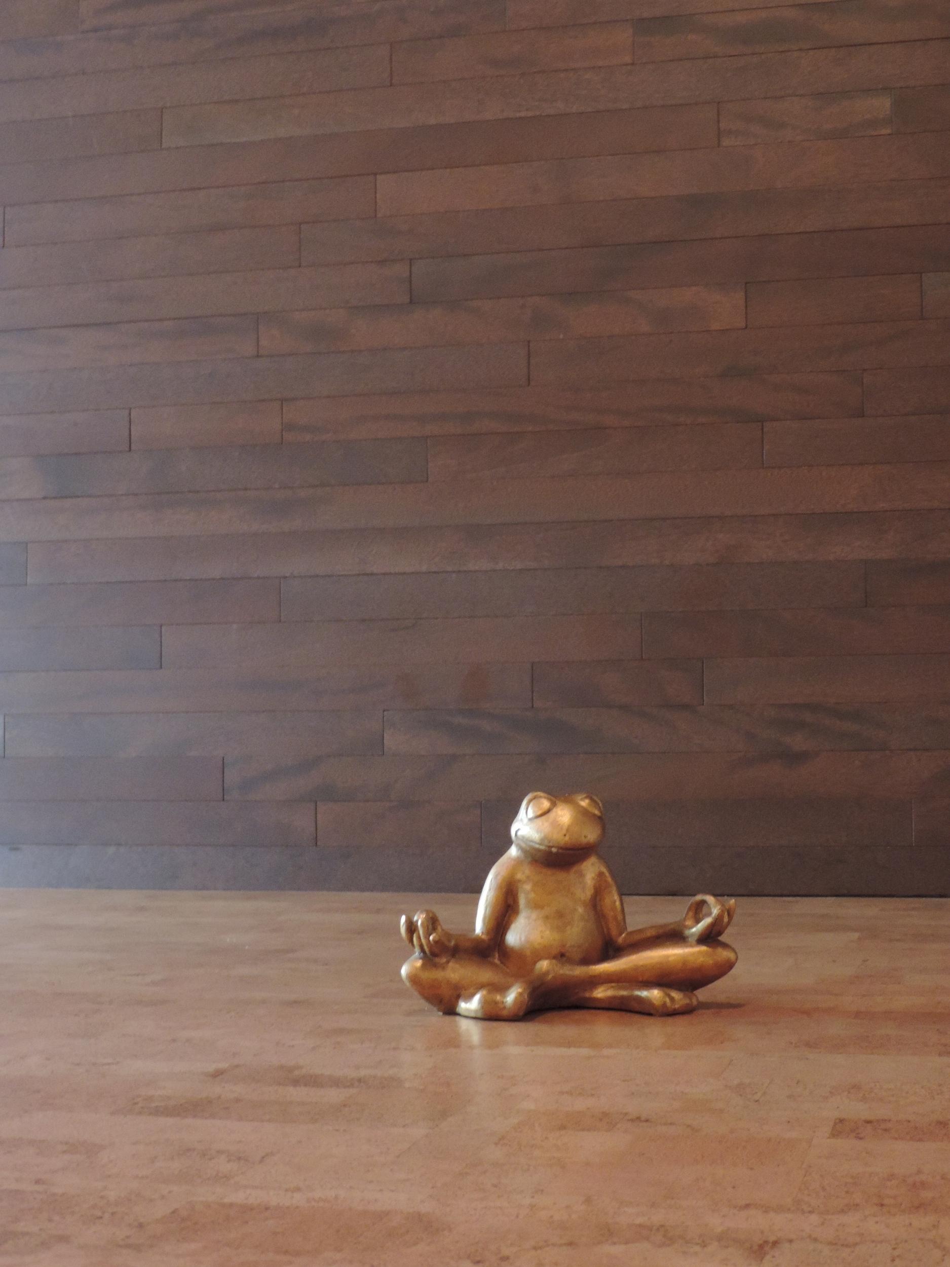 Meditate at Live Yoga