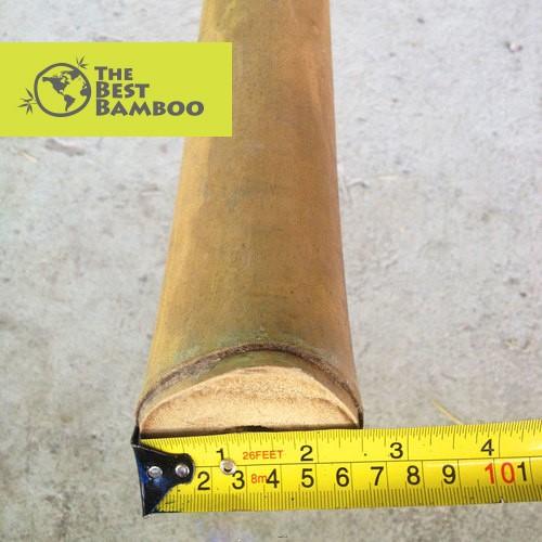 2''-3'' / 5 -7 cm Guadua Bamboo Pole