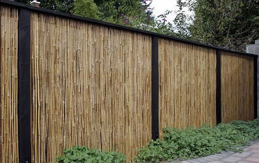 bamboo-fence.jpg
