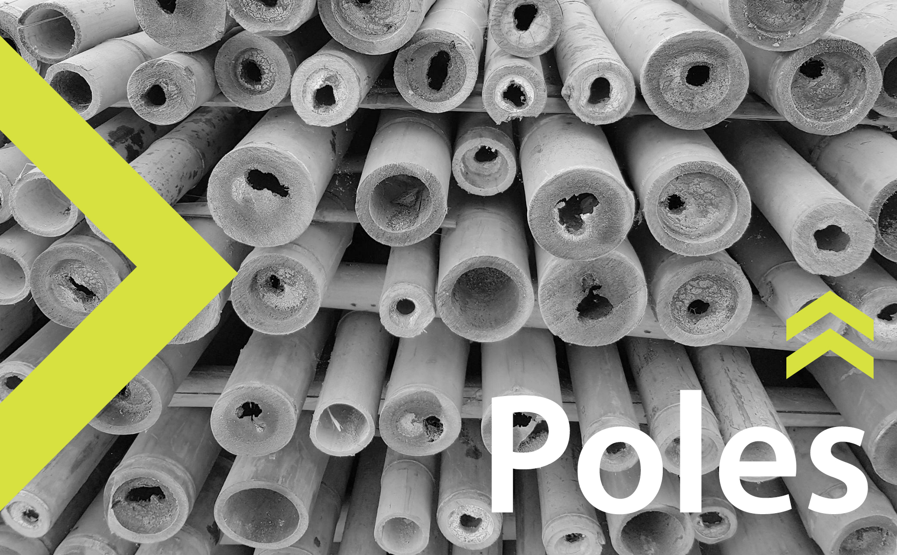 The Best Bamboo Poles for Sale - Inquiries  CLICK HERE