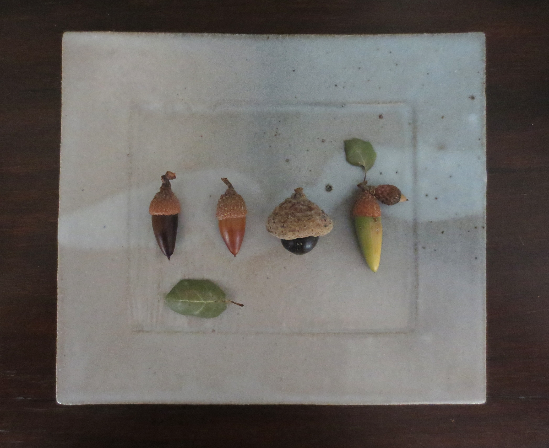 Acorns and leaves on a platter made by my son.