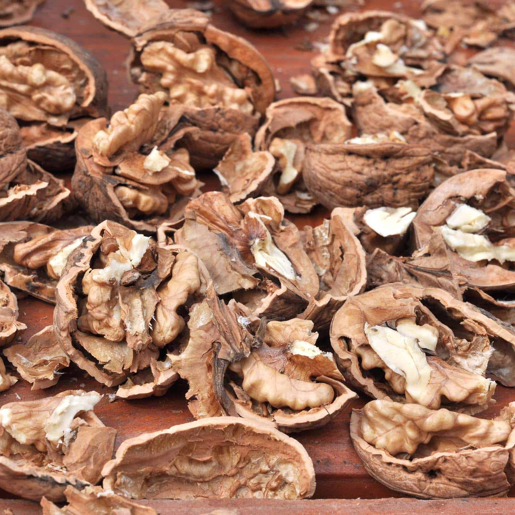 Once broken down, walnut shells can be used as well. -