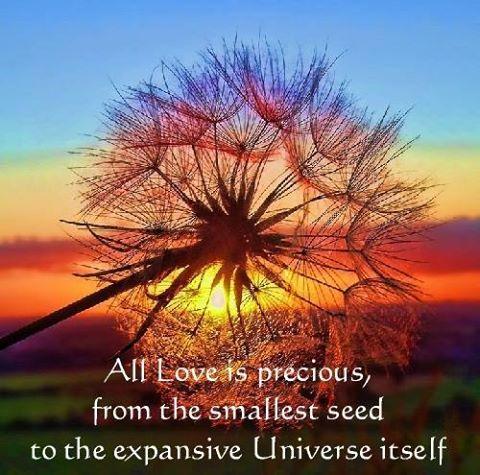 all love is precious.jpg