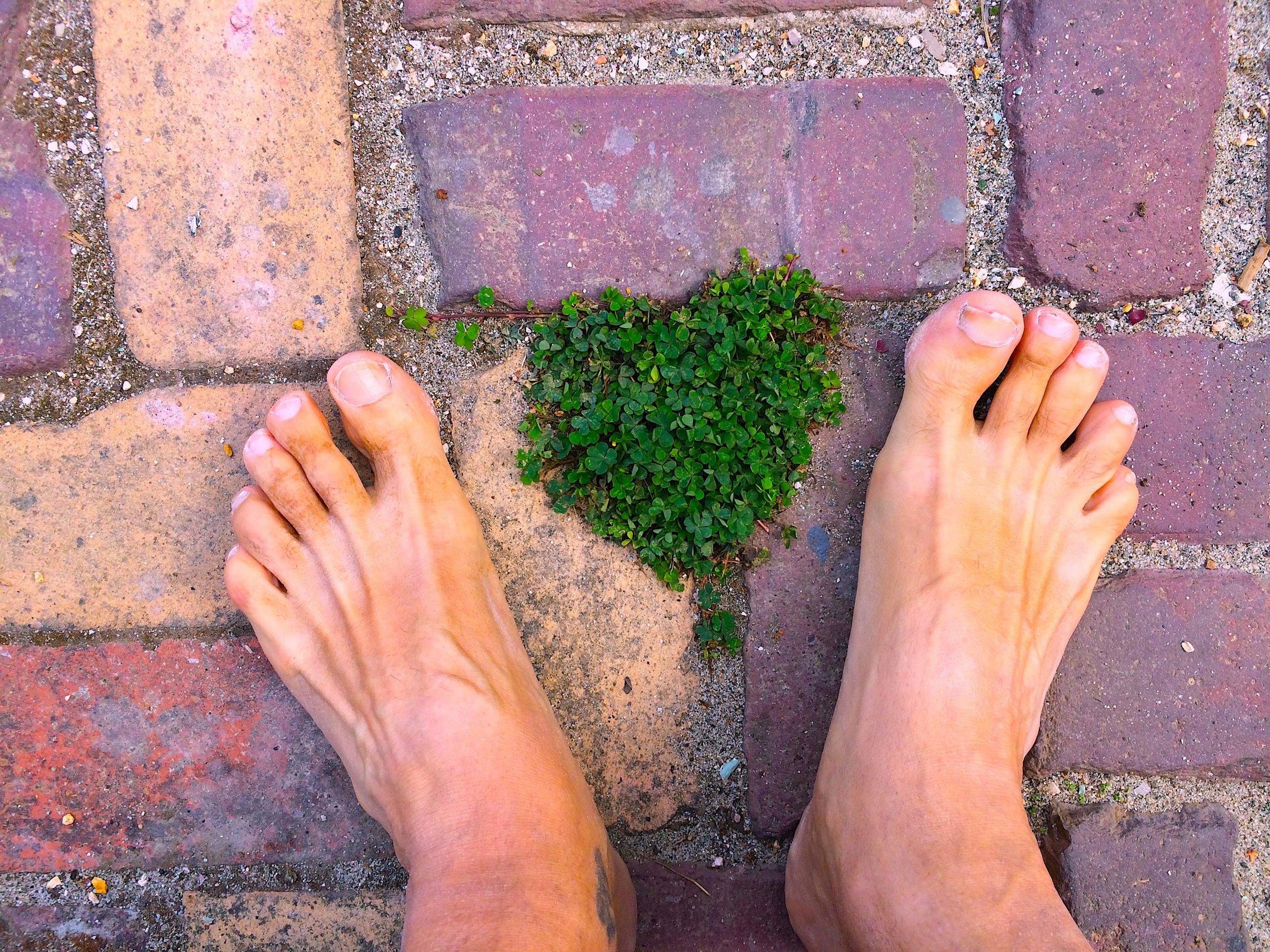 heart feet march 2019 blog.jpg